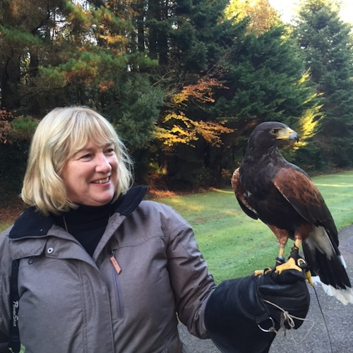Susan Byron on a Hawk Walk at Ashford Castle