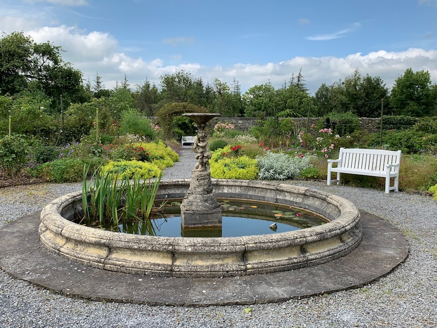 The pond at Woodville surrounded by scented roses