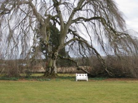 Bellinter House grounds, County Meath
