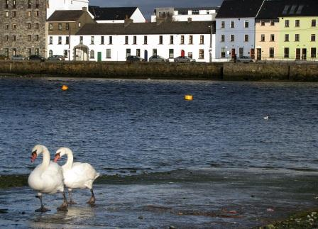 The Claddagh, Galway, Ireland
