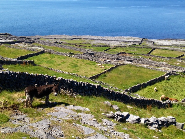 Inis Meain (the middle) of the Aran Islands, County Galway, Ireland