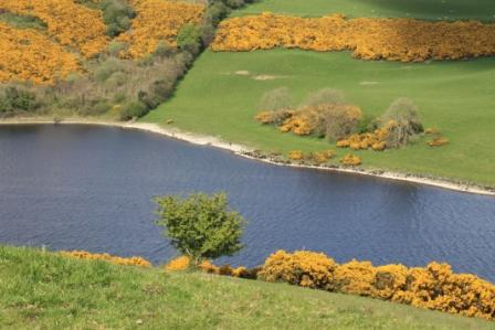 Lake Derrevaragh, County Westmeath