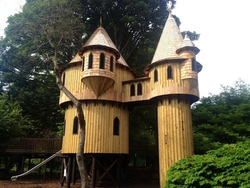 Tree House, Birr Castle, County Offaly